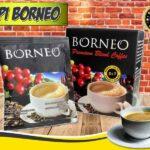 Jual Kopi Borneo Untuk Stamina Pria di Bukittinggi