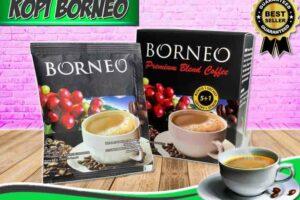 Harga Kopi Borneo Untuk Stamina di Ungaran